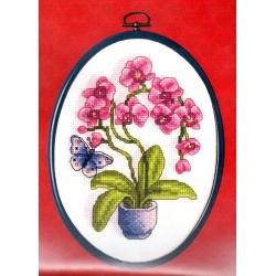 Keresztszemes leszám. 19x15 cm 00038 orchidea