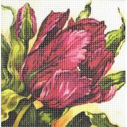 Gobelin 15x15 cm 192 Tulipán