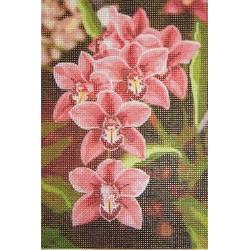 Gobelin 10x15 cm V071 T Orchidea
