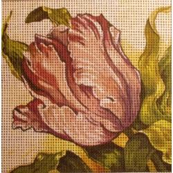 Gobelin 15x15 cm 193 Tulipán