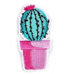 Vasalható folt kaktusz rózsaszín kaspóban