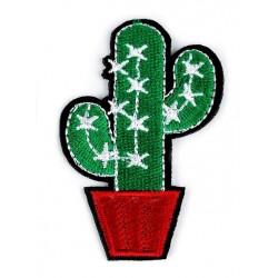 Vasalható folt kaktusz piros kaspóban