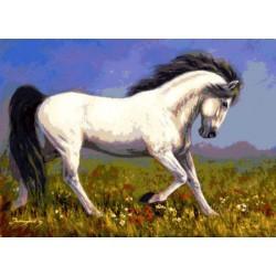 Gobelin 20x30 cm Sz:272 Fehér ló